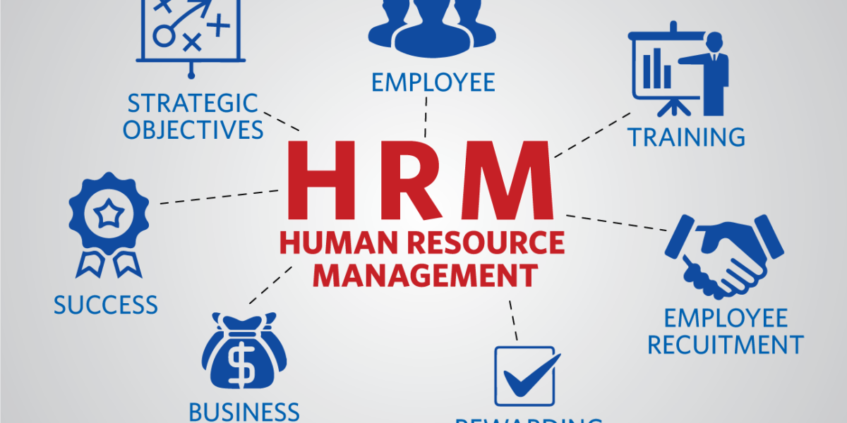 best human resource management software